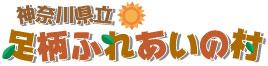 指定管理者:株式会社アグサ・関東学院グループ所管課: 神奈川県教育委員会教育局支援部子ども教育支援課神奈川県横浜市中区日本大通33