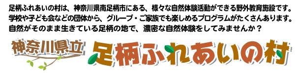 神奈川県立 足柄ふれあいの村